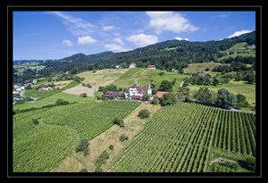 Heiraten - am Land - Appenzell - Schloss Weinstein - Schloss Weinstein