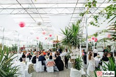 Heiraten - barrierefreie Location - Mittelburgenland - Arche-Moorhof
